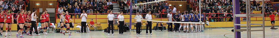 DSW Darmstadt Volleyball